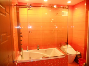 framless glass shower doo brooklyn nyc